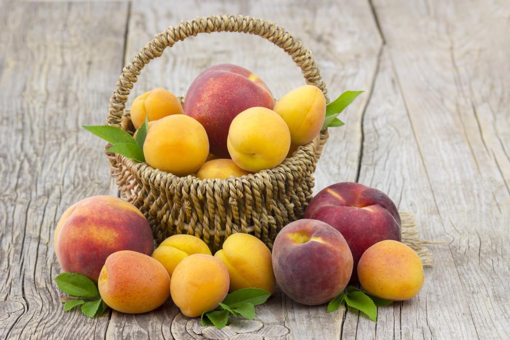 panettone-con-la-frutta-marchesi