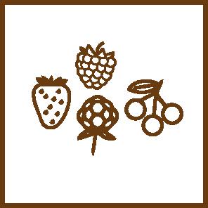 panettone marchesi Frutti di Bosco